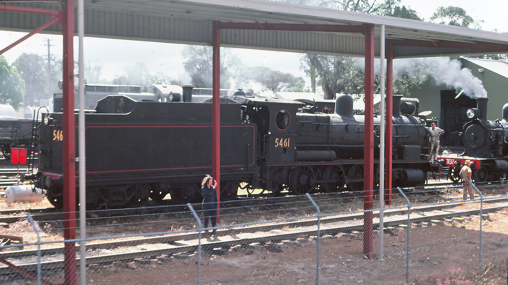 NSWGR_BOX006S08 - 5461 at NSWRTM, Thirlmere by michaelgreenhill