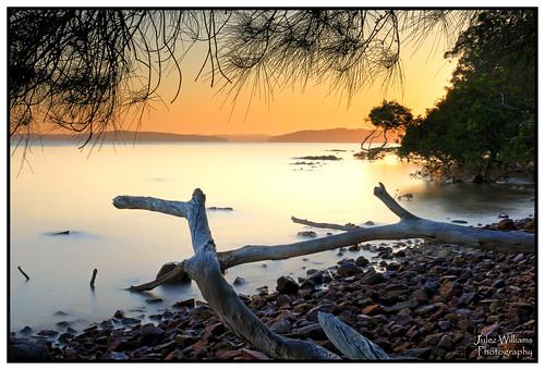 sunrise waterfront rocky shoreline shore photoborder outdoor serene longexposure newsouthwales australia golden water hdr canon 70d
