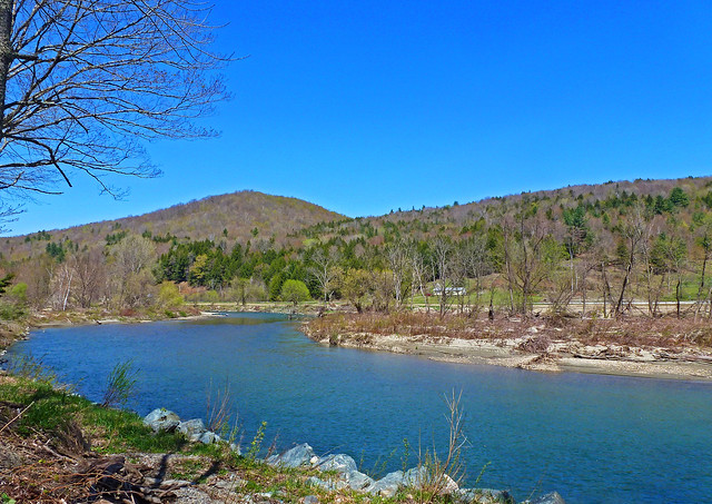 Along the Banks of the White River