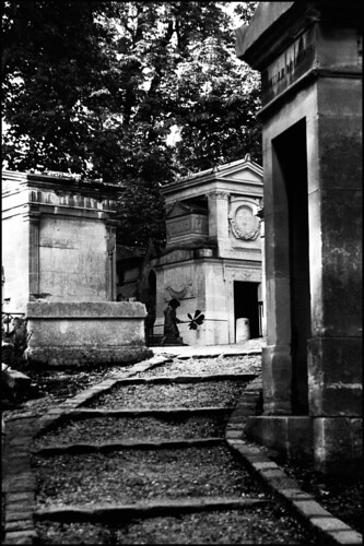 Fallen angel in the cemetery | by Zillicons