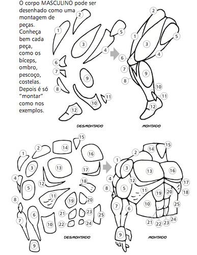 Curso Desenho Corpo Humanos Masculino J Lima Flickr
