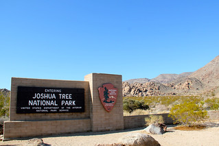 National Park welcomes you to Joshua Tree   by daveynin
