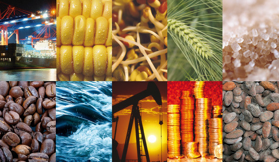 commodities disponibles en mxmtrade