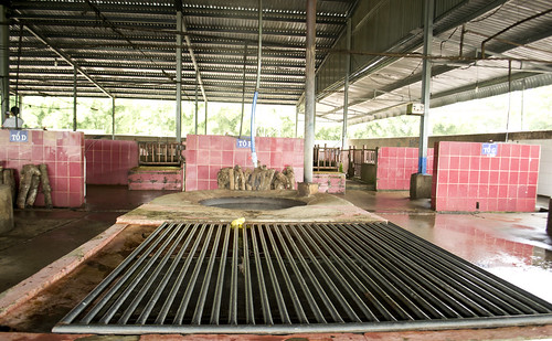 Work-station at local slaughterhouse in Vietnam's central highlands | by International Livestock Research Institute