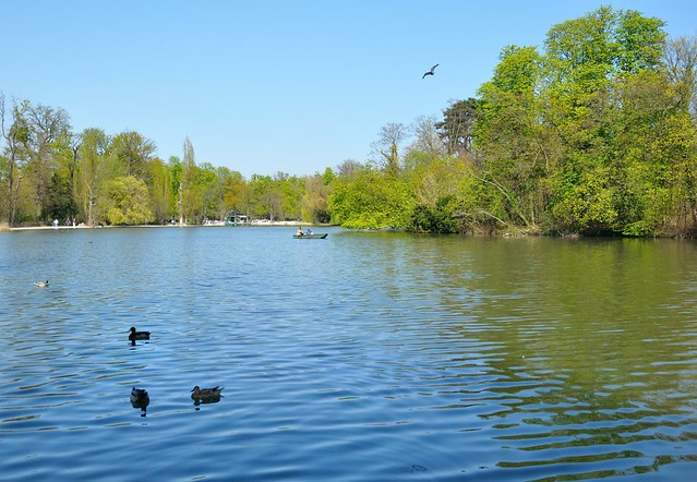 Paris : Bois de Vincennes / Lac des Minimes