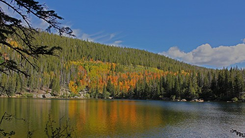yellow orange fallcolor autumncolor autumn fall september aspen trees evergreen firtree pinetree lake water bearlake reflection color brilliant bright bluesky clouds whitecloud green blue rockymountainnationalpark mountains colorado beautiful landscape jannagalski jannagal widescreen panoramic nature