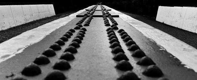Radnor Trail