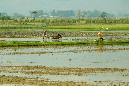Myanmar-20180325-1440 | by ShaneAndRobbie