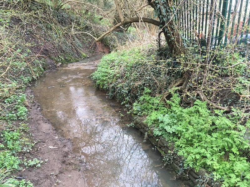 Coombe Brook