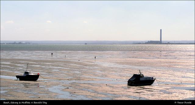 Beach, Estuary & Mudflats: A Beautiful Day P8280063
