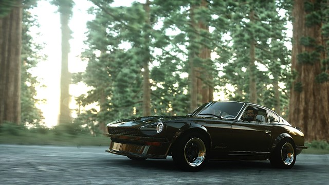 Fairlady in a forest