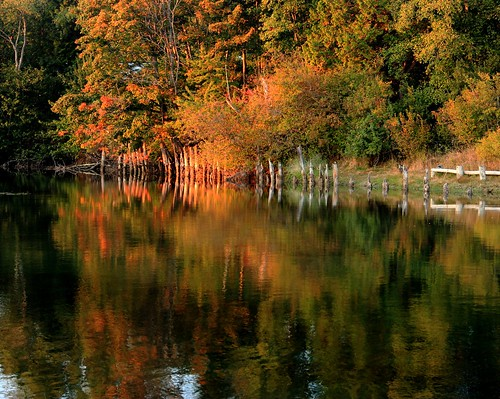 autumn canada fall reflections river bc herbst whiterock autunno fallcolours