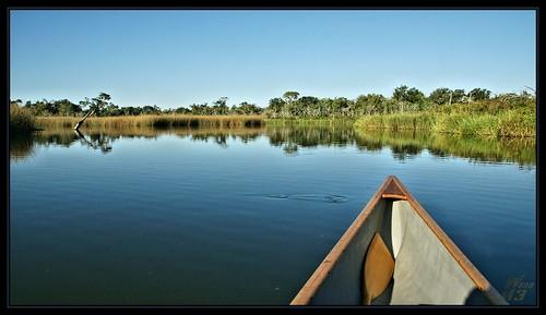 nature water landscape scenery texas scenic canoe bayou pasadena canoeing paddling waterscape horsepenbayou wanam3