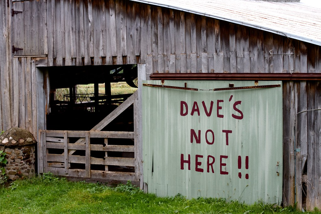 Dave is Not in the Barn