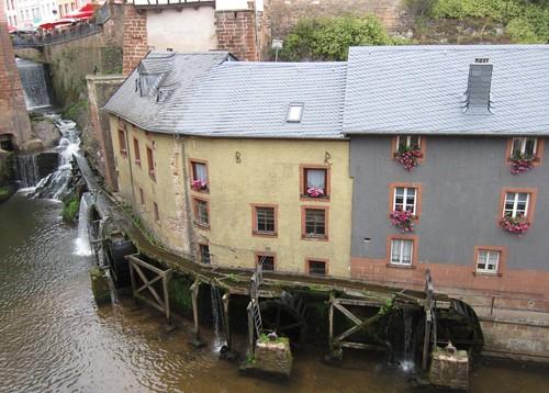 Saarburg water wheels   by Abby flat-coat