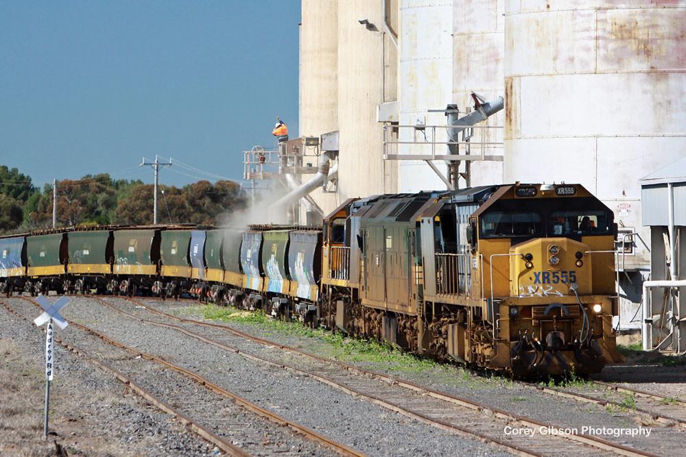 PN grain loading at Hopetoun by Corey Gibson