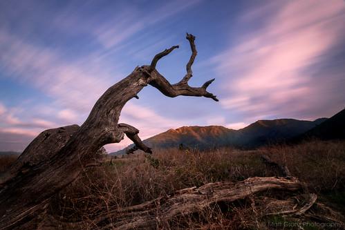 california longexposure sunset mountain tree nature clouds landscape mt alpenglow mountdiablo