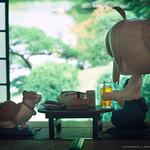 蜜柑色の夏休み / Summer Holiday
