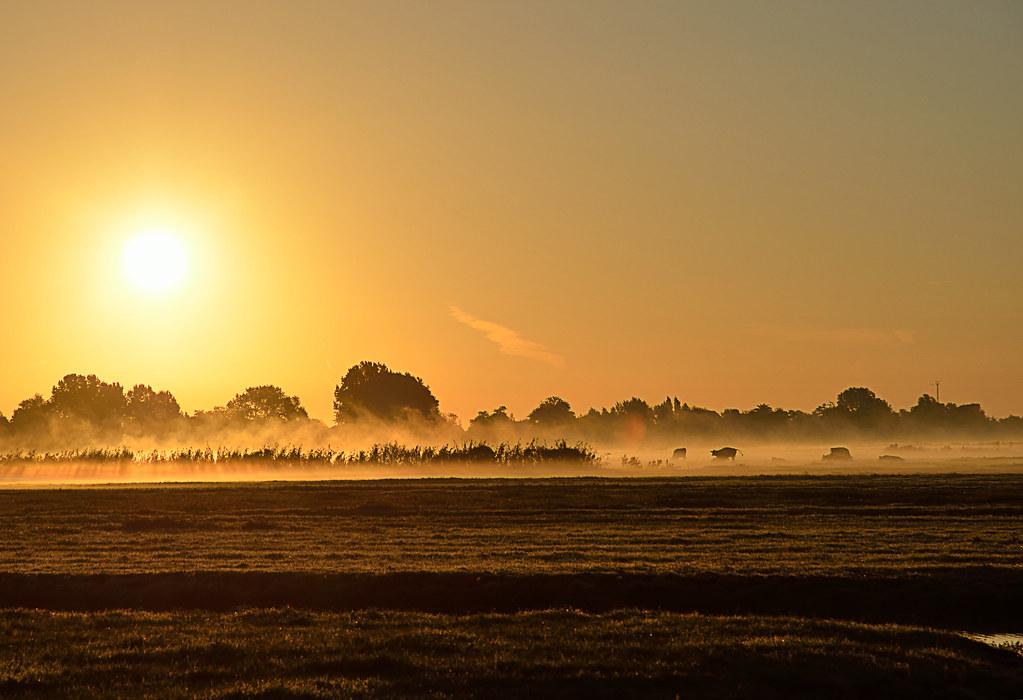 Dutch Morning light on 08/30 2016