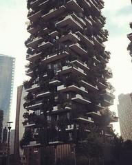 Bosco verticale- Milano