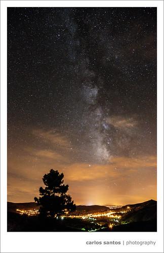 trees sky night stars landscape vela starts milkyway canon5dmarkiii mygearandme mygearandmepremium grury