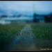 IMG_9271-Edit-100