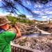 Le Parc de la Batiscan en HDR