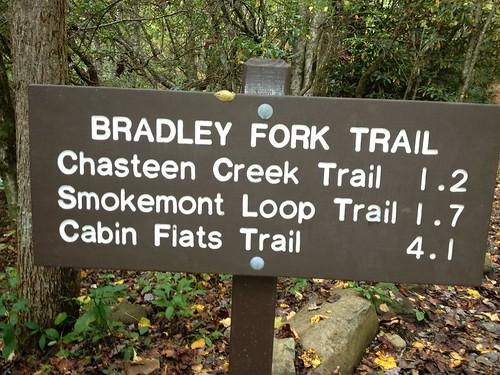 hiking backpacking smokymountains greatsmokymountainsnationalpark gsmnp smokemont bradleyfork
