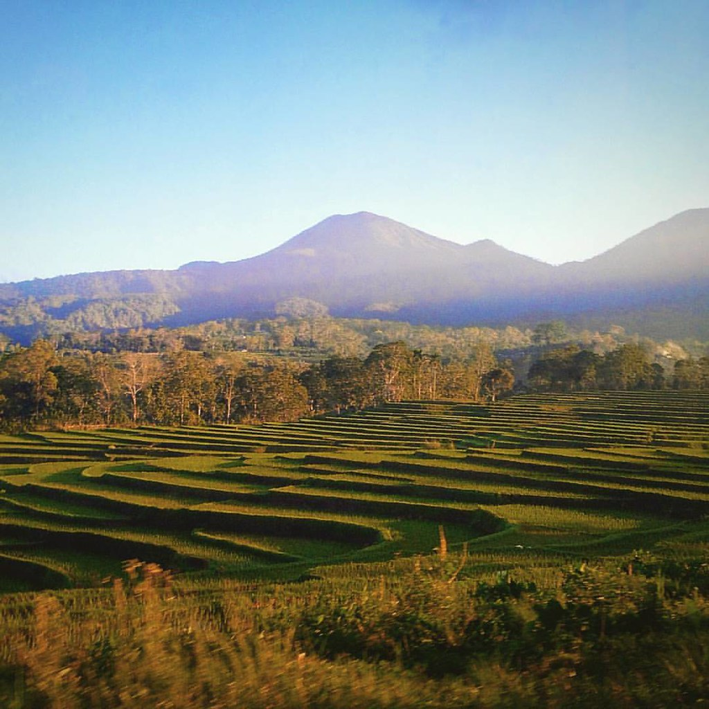 Happy Friday Indonesia Terracing Ntt Flores Indonesi