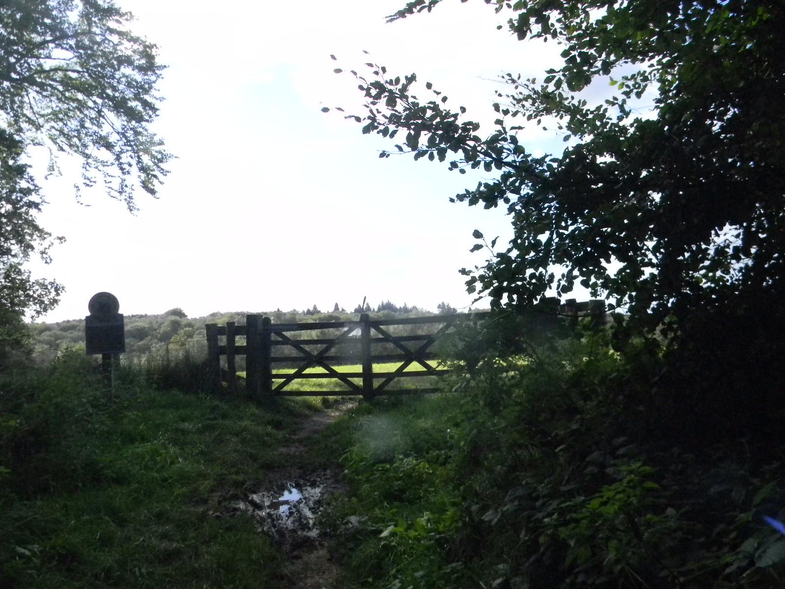 Valewood Park - gate Haslemere Circular
