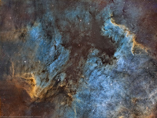 North America & Pelican Nebulae