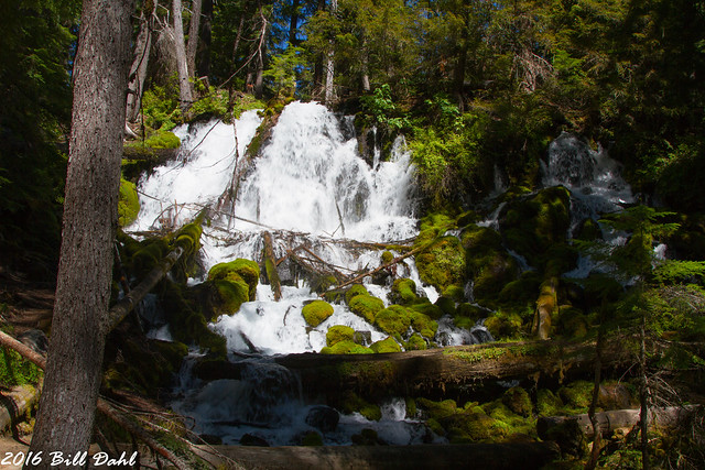 Clearwater Falls 660