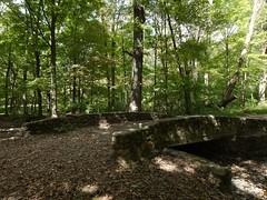 日, 2012-09-16 13:12 - Lenape Trail