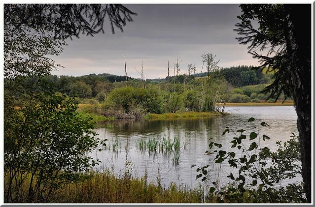 Etang du Taureau - Saint-Brisson (Nièvre)