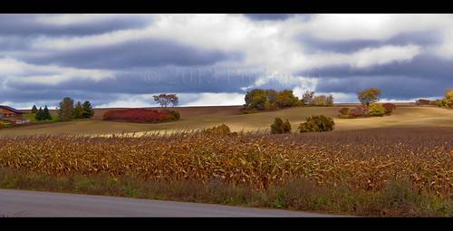 earlrowe fallcolors landscape pedjaphoto pedjaphotography ontario scenery sonya200 sal18250 pedja predrag sonyalpha tgam:photodesk=rural2013 sonyalphaphotography a200 predragg pedjag predragphotography