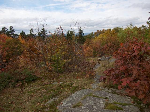 5:41:26 (98%): hiking newhampshire mtkearsarge winslowstatepark