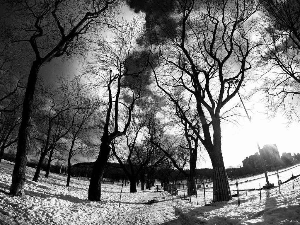 Post winter walk