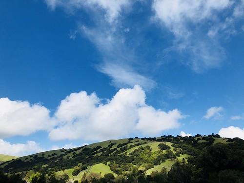 marin county lucas valley ☘️