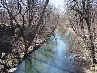 Bronx River | by lulun & kame