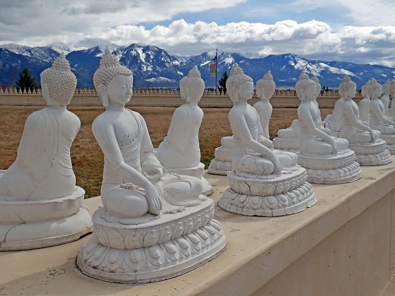 1000 Buddhas (44)