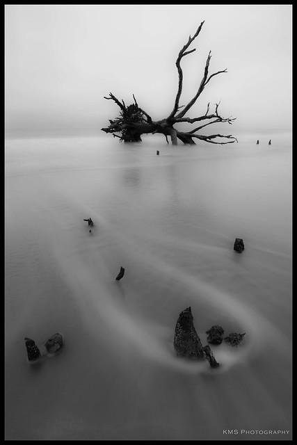 Boneyard Beach 1
