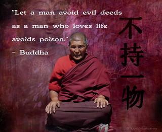Buddha Quote 17   by h.koppdelaney