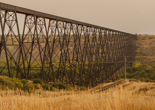 Lethbridge Viaduct   by Michael Brager Photography