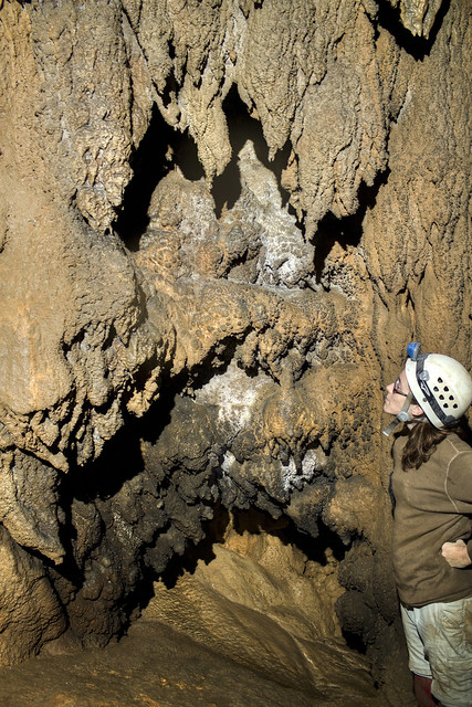 Cave Formations 6, Cambria DeLee, WH20