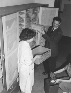 The Herbarium being moved, Feb 20, 1952