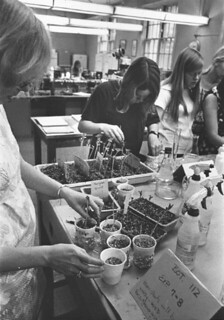 Botany Lab in 1970
