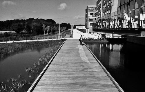 Boardwalk (Explored) (Cambridge 2012)