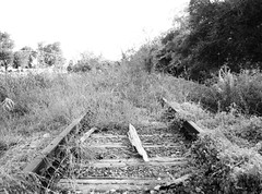 Abandoned Railroad Right-of-Way between Fannett and Winnie, Texas 1209031744BW