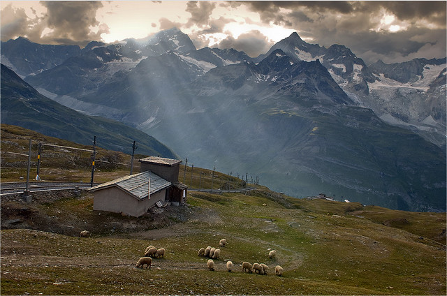 Swiss Summer Sunset in Rotenboden . (Zermatt) . no. 1206