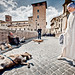 Nun and Dog in Rome by http://heatherbuckley.co.uk
